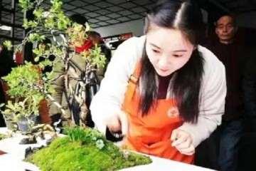 2019年 扬派女盆景师摘金夺银展技艺
