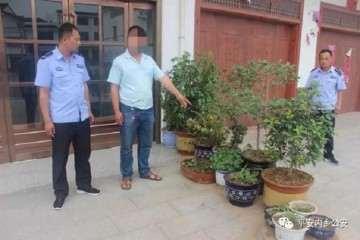 内乡县破获一起盗窃上水石盆景案件