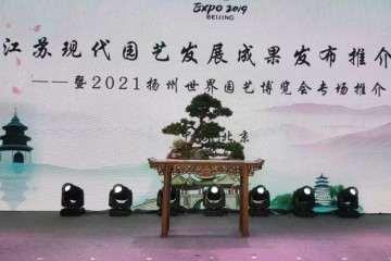瘦西湖扬派盆景惊艳亮相2019北京世园会