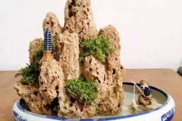 上水石盆景盆底铺什么 图片
