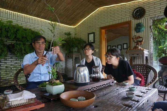 岭南盆景的传承与发展研讨会