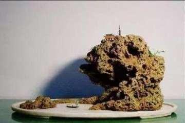 怎么用上水石做假山盆景?