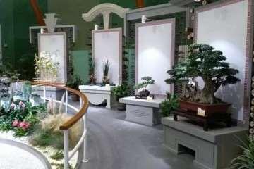 海派盆景送展世园会第二次评审