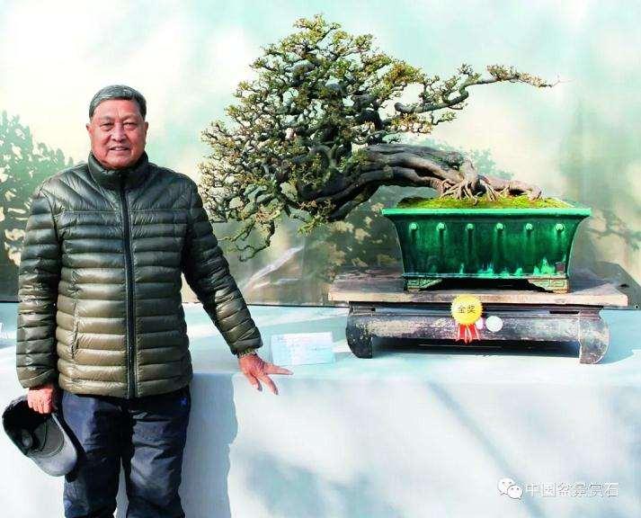 刘学武先生制作盆景40多年
