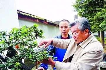 2019年 胡乐国盆景艺术研讨会即将举行