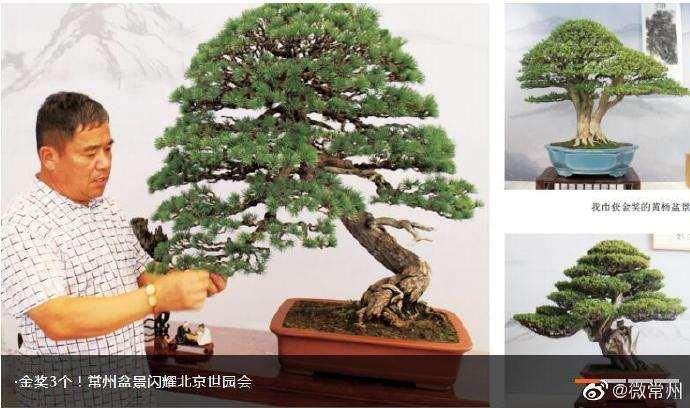 中国世界园艺博览会在北京举行