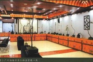 2017年 海幢寺举办的素仁格盆景艺术研讨会