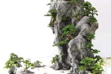 山水盆景怎么配盆布局的方法