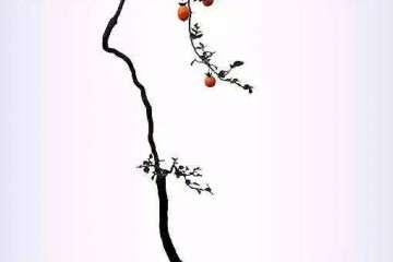 文人树盆景的文在那里 谁知道