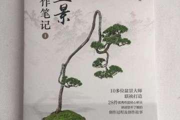 赵庆泉老师的新书《盆景创作笔记》