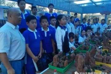 深圳市学府中学假山艺术盆景社团活动