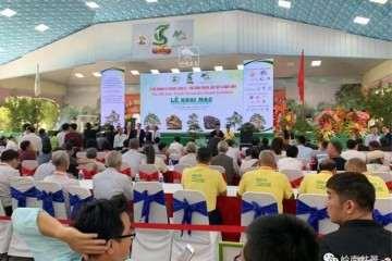 第15届亚太盆景赏石博览会在越南胡志明市举行