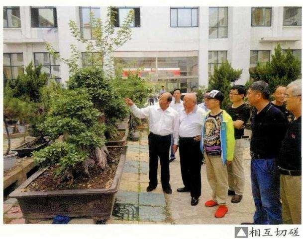 2019年 明光盆景赏石协会成立会员大会