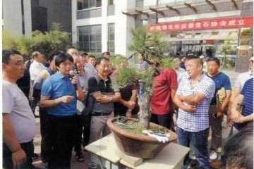 2019年 明光市盆景赏石协会成立会员大会
