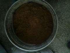 我想把两棵石榴下山桩插在一个盆里 可以吗