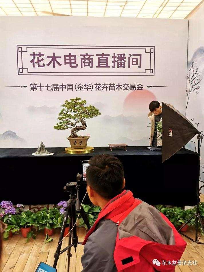 浙江花卉盆景产业给我们带来什么启示