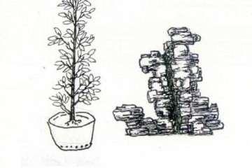 图解 贴石式附石盆景怎么设计制作