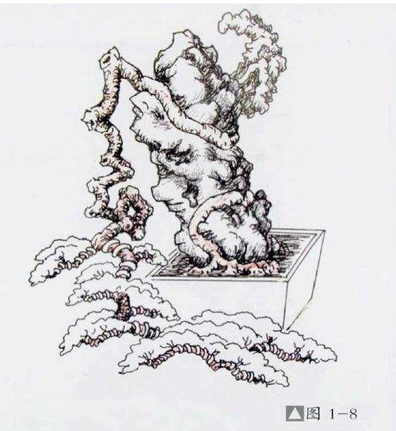 图解 石上捞月式盆景怎么制作的方法
