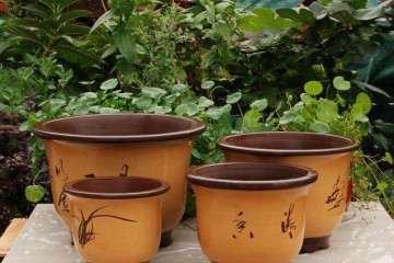 宜兴哪里是批发紫砂盆景花盆的市场