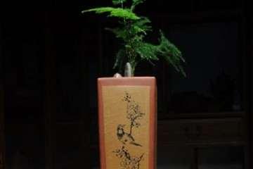 郑州哪里有批发盆景花盆的市场