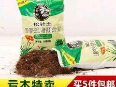 集市买的胶泥土可以种栀子花下山桩吗