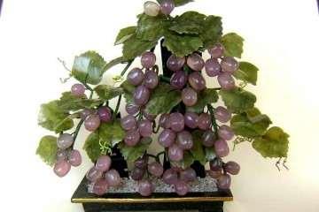 盆栽葡萄怎么病虫害防治的方法 图片