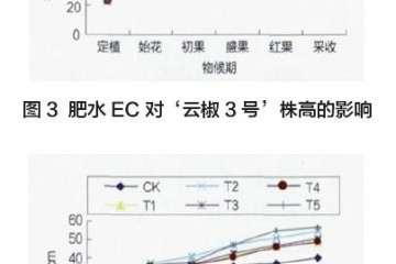 肥水EC对辣椒盆栽株高 株幅的影响