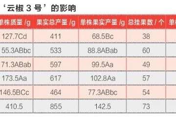 肥水EC对云椒3号辣椒盆栽的影响 图片