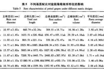 不同基质配比对盆栽葡萄根系特征的影响