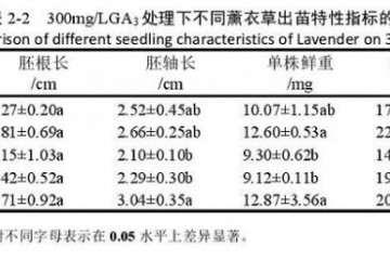 不同浓度GA3对薰衣草盆栽出苗的影响