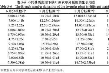 不同基质对狭叶薰衣草盆栽分枝数的影响