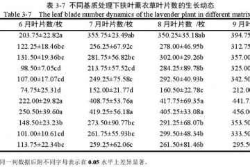 不同基质对狭叶薰衣草盆栽叶片数的影响