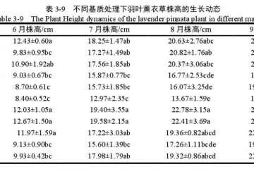 不同基质对羽叶薰衣草盆栽株高的影响