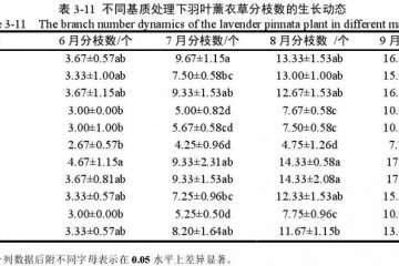 不同基质对羽叶薰衣草盆栽分枝数的影响