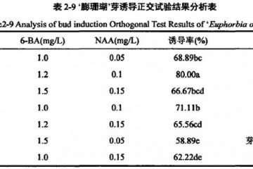 不同热活化处理对盆栽小麦重金属的影响