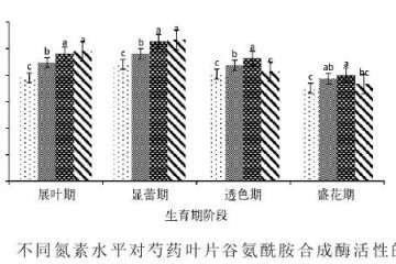 供氮水平对盆栽芍药谷氨酸合成酶活性的影响