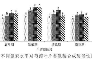供氮水平对盆栽芍药谷氨酰胺合成酶活性的影响