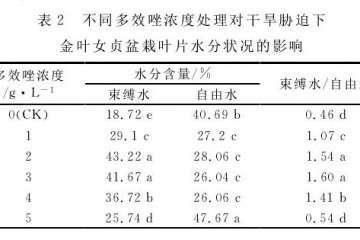 多效唑对女贞盆栽叶片水分状况的影响
