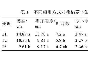腐殖酸施用方式对萝卜盆栽的宽高的影响
