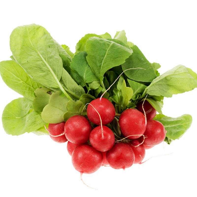 腐殖酸对樱桃萝卜盆栽有什么影响