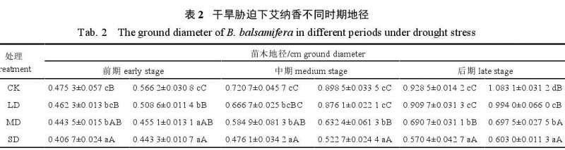 不同干旱胁迫处理对艾纳香盆栽根冠比的影响