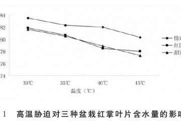 高温胁迫对红掌盆栽叶片相对含水量的影响