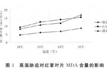 高温胁迫对红掌盆栽叶片MDA含量的影响