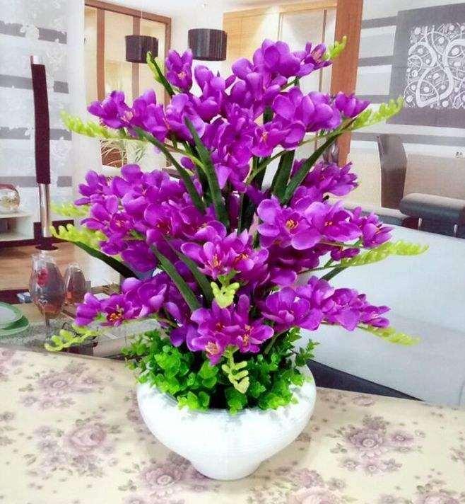 蝴蝶兰组合盆栽怎么制作的方法 图片