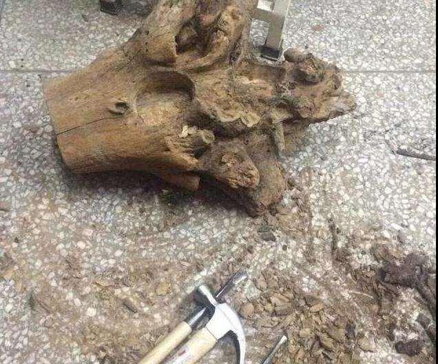 怎么用木桩做多肉花盆的方法