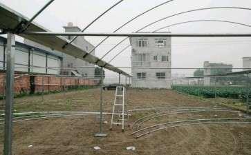 在农村搭建多肉大棚的全程记录