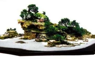 山水盆景怎么植物配置的方法
