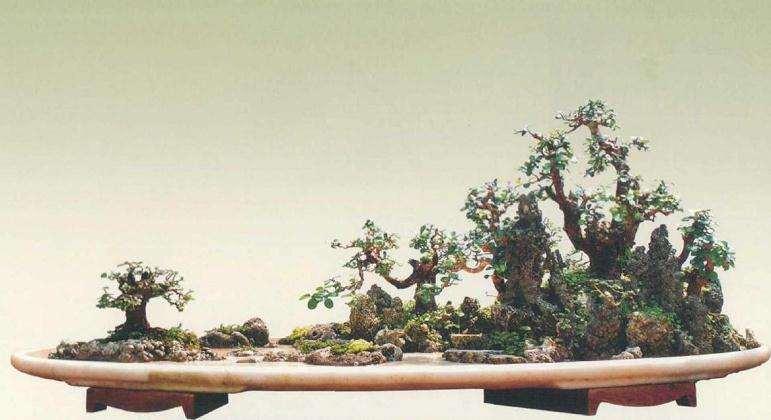大型树石盆景怎么创作的方法