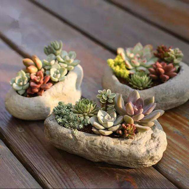 怎么用石头做多肉花盆的方法