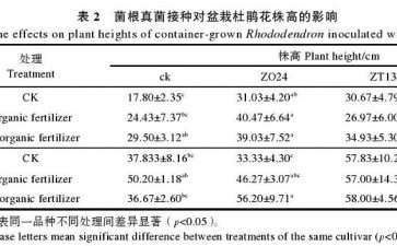 菌根真菌接种对杜鹃花盆栽苗株高的影响